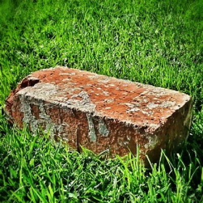 Brick in grass
